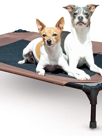K & H Products Original Pet Cot – Your Pet, On the Go